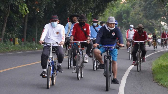 Gowes